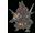 Pokémon monthracite-gigamax