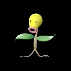 Pokémon chetiflor