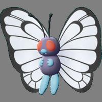 Papilusion - Évolution de Chrysacier