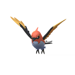 Pokémon braisillon