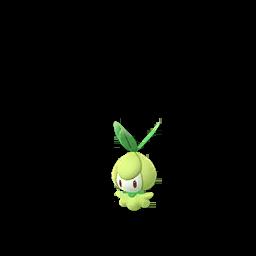 Pokémon chlorobule