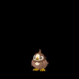 Sprite femelle chromatique de Étourmi - Pokémon GO