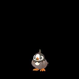 Sprite femelle de Étourmi - Pokémon GO