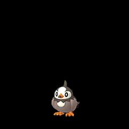 Fiche de Étourmi - Pokédex Pokémon GO