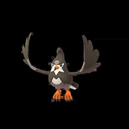 Sprite femelle de Étourvol - Pokémon GO