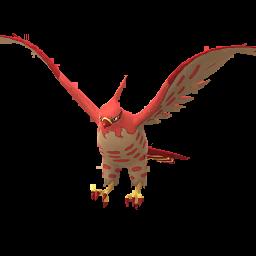 Pokémon flambusard-s