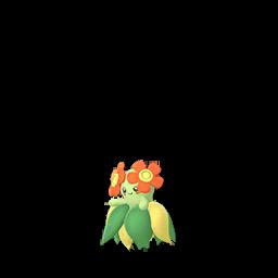 Pokémon joliflor