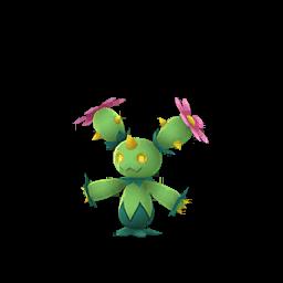 Modèle de Maracachi - Pokémon GO