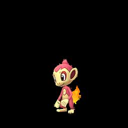 Sprite chromatique de Ouisticram - Pokémon GO
