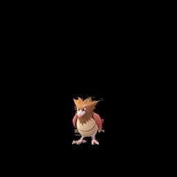Sprite  de Piafabec - Pokémon GO