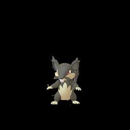 Pokémon rattata-d-alola