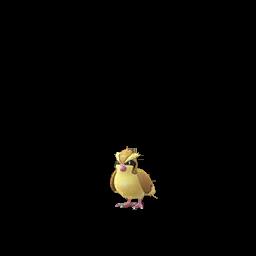 Modèle de Roucool - Pokémon GO