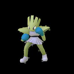 Pokémon tygnon-s