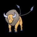 Pokémon 128