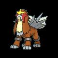 Pokémon 244