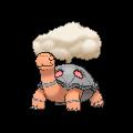 Pokémon 324