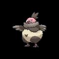 Pokémon 629