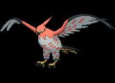 Pokémon 663