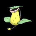 Pokémon empiflor