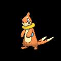 Pokémon mustebouee