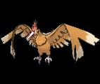 Pokémon rapasdepic