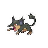 Pokémon rattata_alt