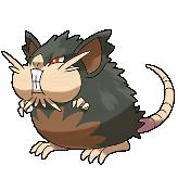 Pokémon rattatac_alt