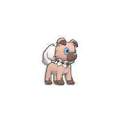 Pokémon rocabot
