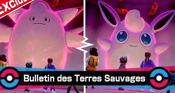 Pokémon Épée et Bouclier : événement de l'Équinoxe dans les Raids Dynamax