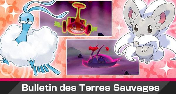 Pokémon Épée et Bouclier : nouvel événement Dynamax avec Pashmilla shiny